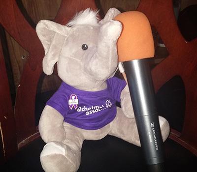 Wanda the stuffed elephant