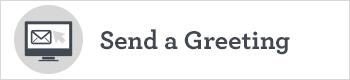 greybutton350x80-send